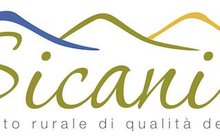 logo_drq_sicani_2x