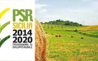 psr sicilia 2014 20120