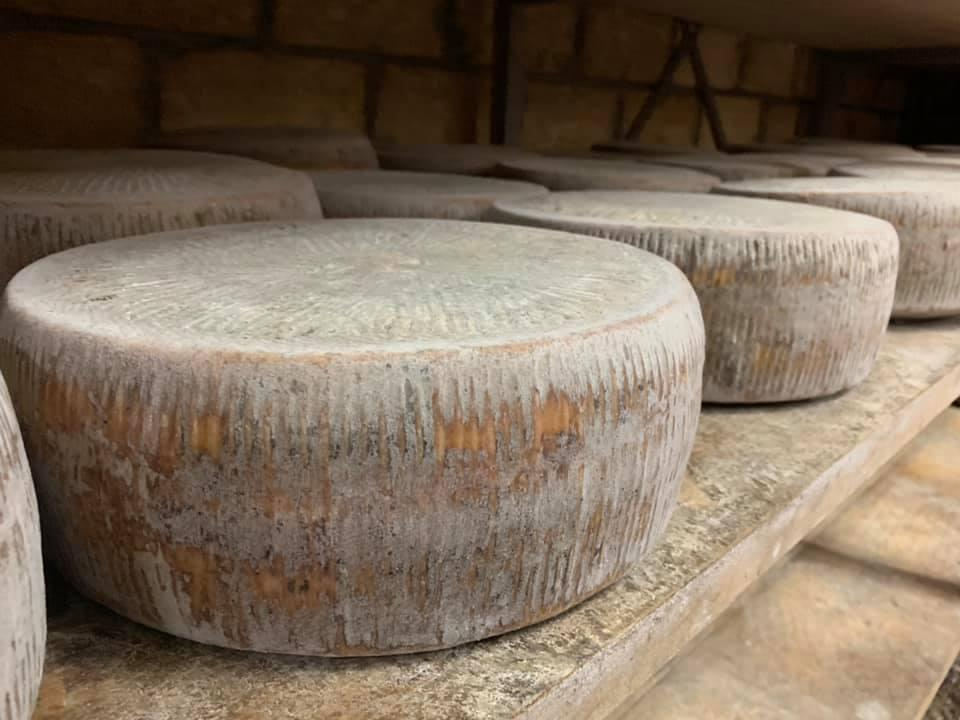 DRQSICANI formaggi 6